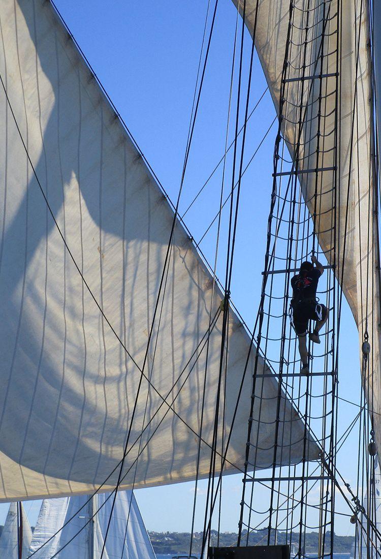 Activités à bord de nos voiliers partenaires West Avel