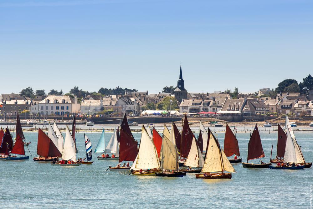 Activité régate en flottille Bretagne